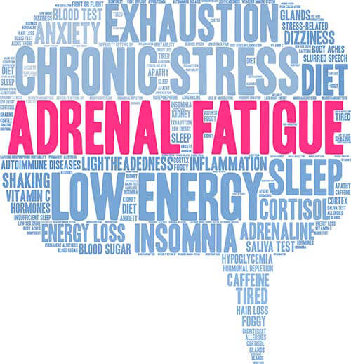 Adrenal Fatigue—Stress in the 21st Century